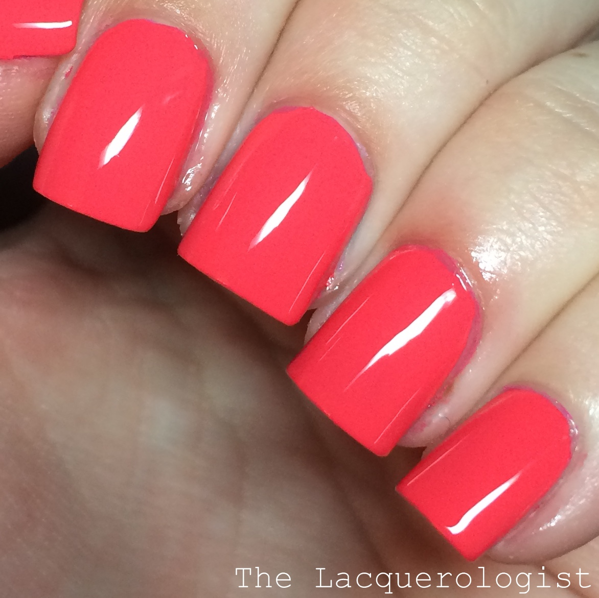 Sally Hansen Miracle Gel Poolside Paradise Collection: Partial ...