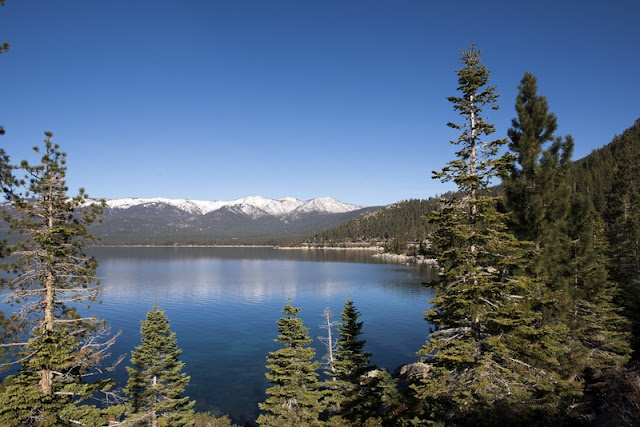 Landscape of lake and Forest at Lake Tahoe