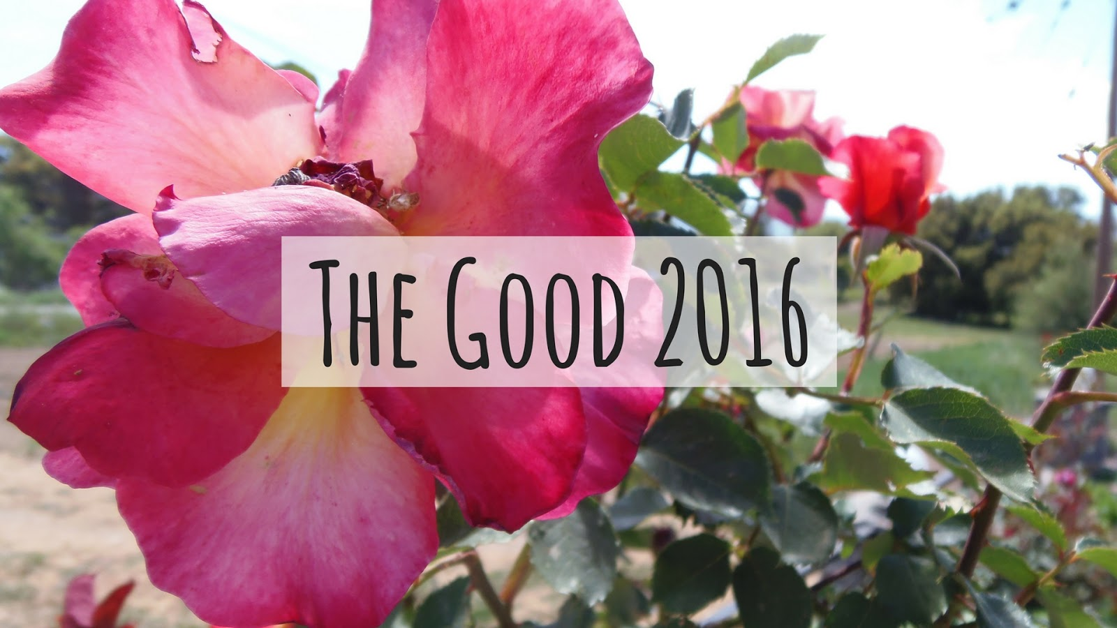 good, the bad, the ugly, depression, travel, lifestyle, holidays, 2016, 2017, new year