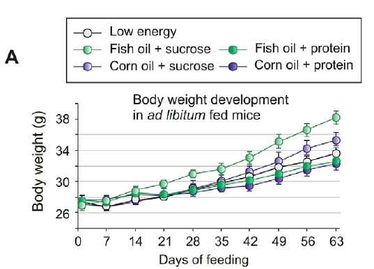 Oat beta-glucan ameliorates insulin resistance in mice fed on high-fat and high-fructose diet