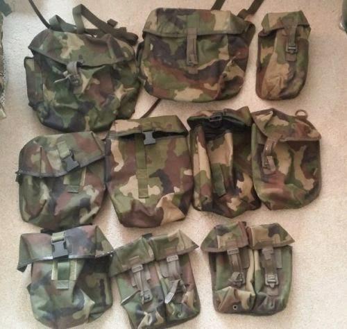 Webbingbabel: Irish Army DPM IDF TRIALS PLCE Webbing & Daysack