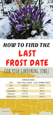 How to find your last frost date.