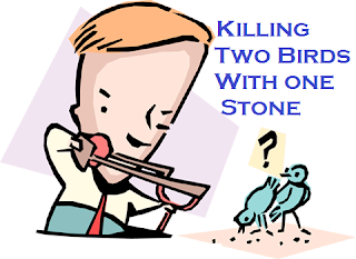 Meaning and sentence of the idiom' killing two birds with one stone'