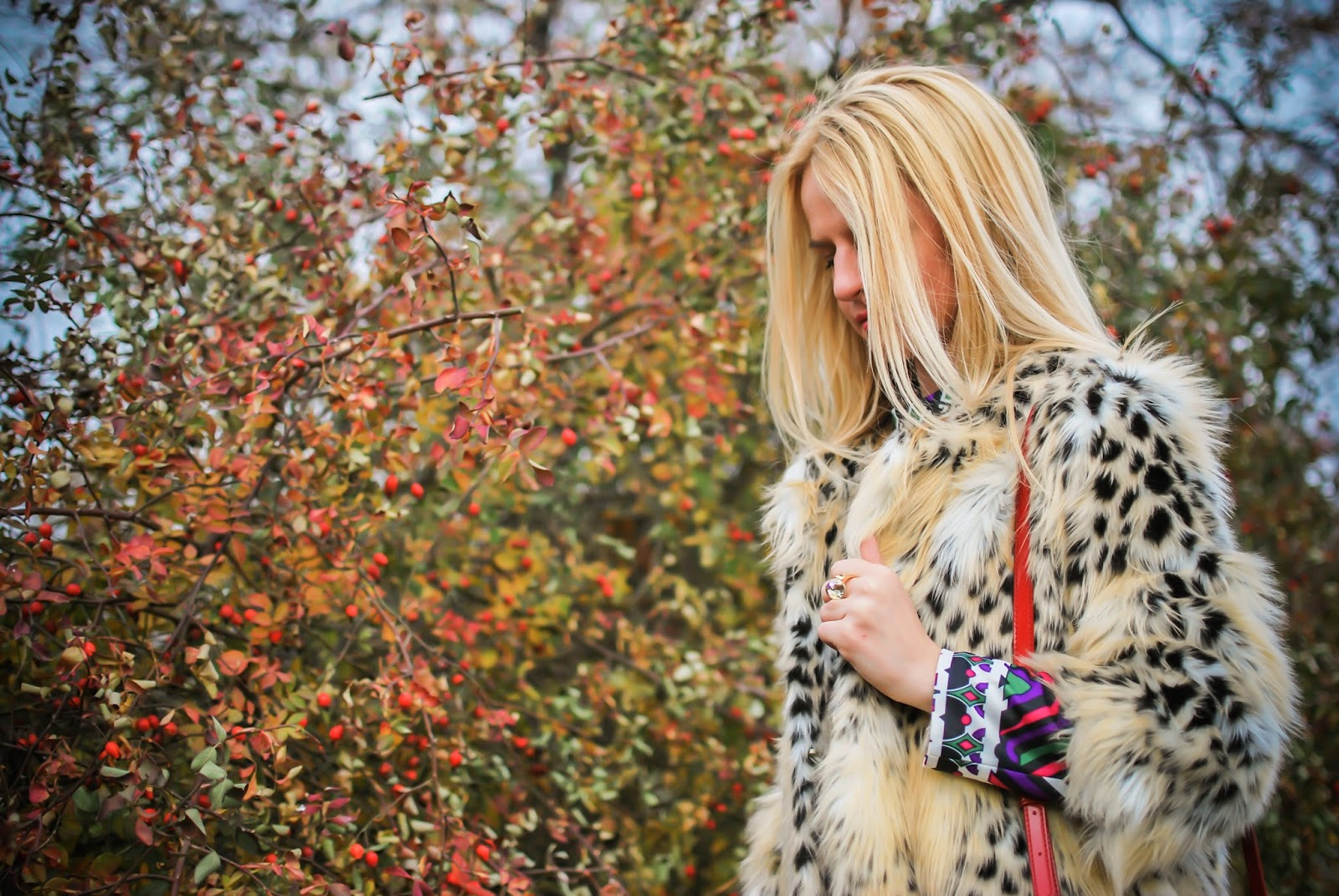 animal print, leopard jacket, fashion blogger, blog, russian blog