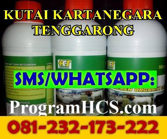 Jual SOC HCS Kutai Kartanegara Tenggarong