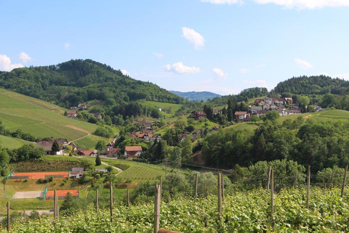 Alde Gott Panorama-Wanderweg in Sasbachwalden