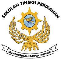 logo stp