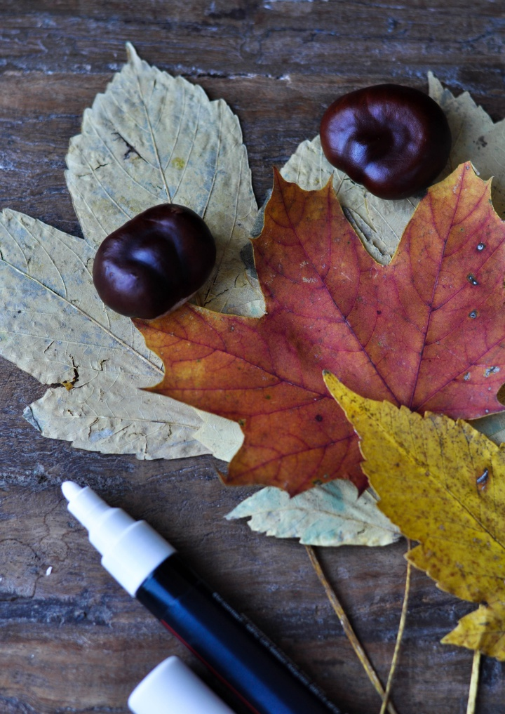 make those #colorful #leafs even prettier: paint them!
