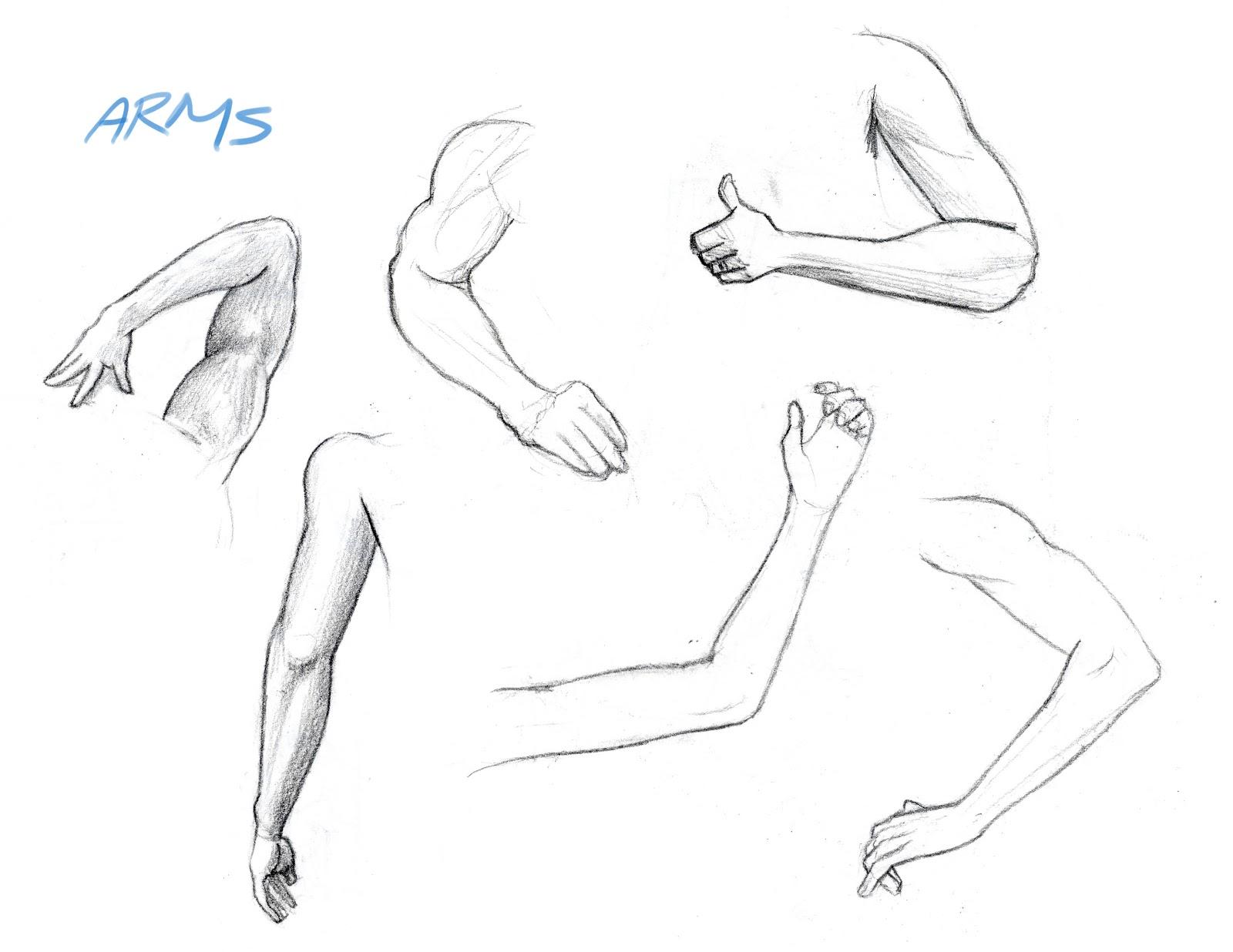 Arash Rod S Art Arms And Legs Drawings