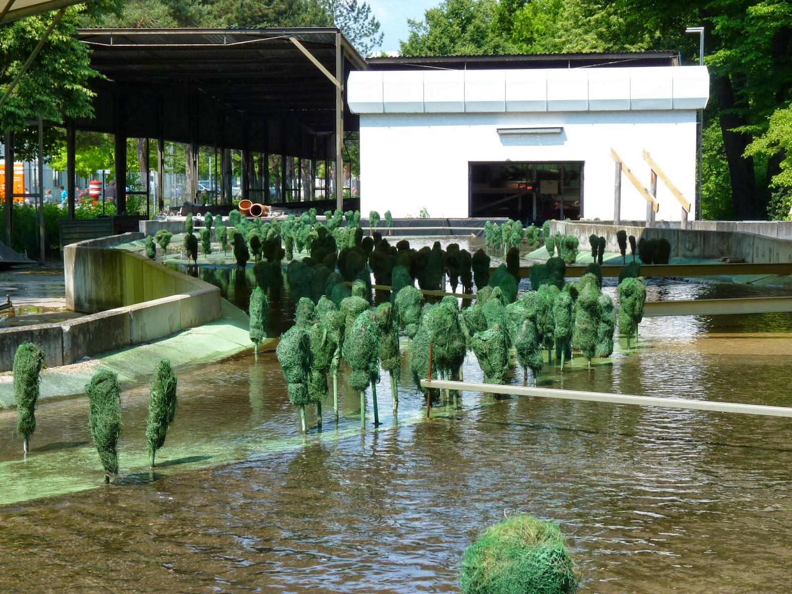 Causas Inundaciones en Ingeniería Civil