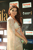 Tanya Hope Charming Beautiful Yioung Fresh Face in Designer Gown at IIFA Utsavam Awards 2017  Day 2  Exclusive 08.JPG