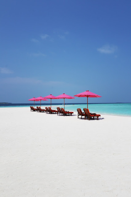 best resorts in maldives for honeymoon