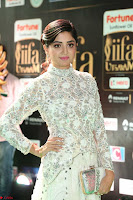 Poonam Kaur in Beautiful Floor Length Gown at IIFA Utsavam Awards 2017  Day 2  Exclusive 35.JPG