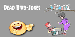 Dead Bird-Jokes Image