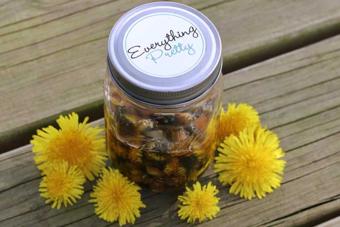 How to make dandelion oil for DIY natural remedies. Dandelion uses are plenty from dry skin to lip balm to sore muscles.  The benefits of dandelion oil are amazing.  Make this dandelion diy for your next diy bath and body project.  #diy #dandelion