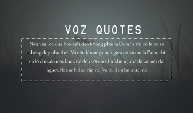 Những câu nói ngôn tình hay 2