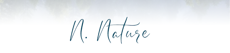 Nat et nature, le blog
