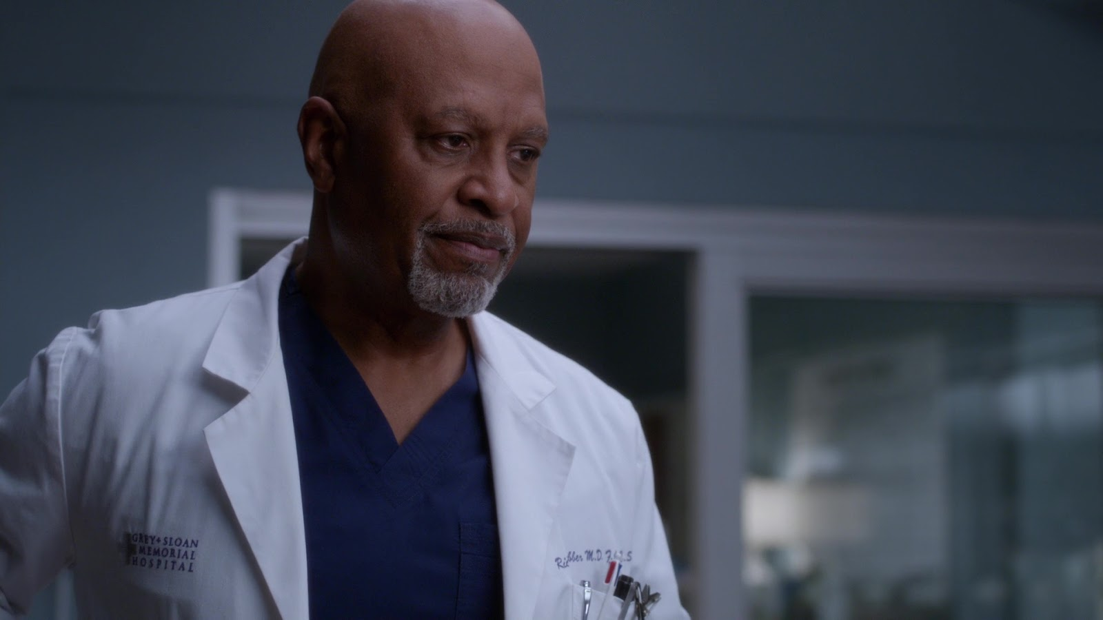 Grey's Anatomy 15x03 Gut Feeling Webber