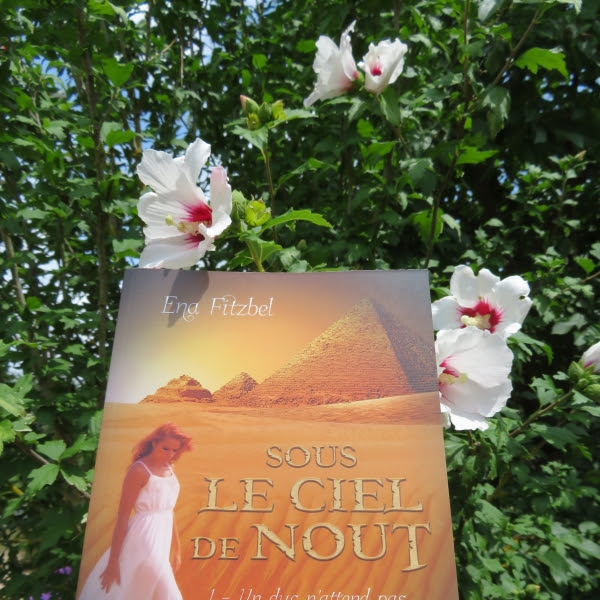 Sous le ciel de Nout, tome 1 de Ena Fitzbel
