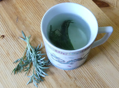 Wermut-Tee