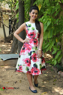 Actress Nikki Galrani Stills in Floral Dress at Velainu Vandhutta Vellaikaaran Press Meet  0017