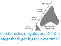 http://sciencythoughts.blogspot.co.uk/2015/07/carcharocles-megalodon-did-megashark.html