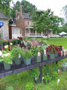a wooden stand with pots of herbs and flowers for sale and locust grove historic home in the background with the back porch and brick building