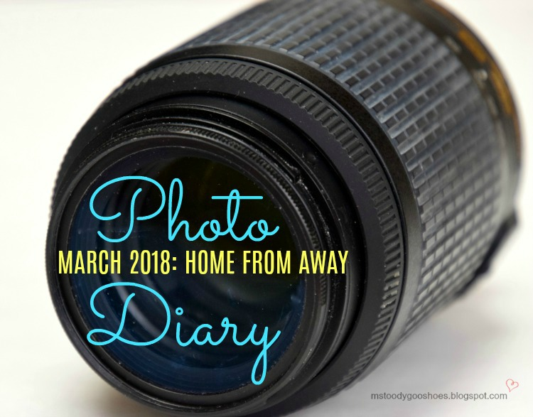 March Photo Diary | Ms. Toody Goo Shoes