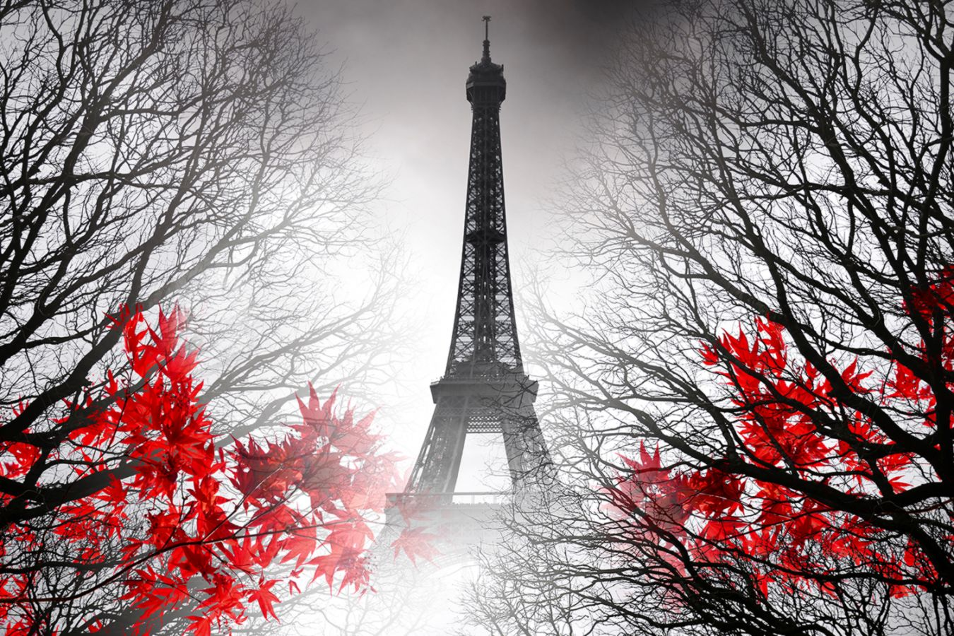 Eiffel Tower Wallpaper Wallpapers Tumblr