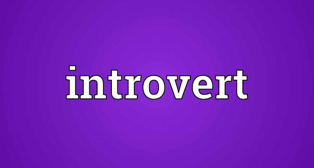 Apa Itu Introvert ? Pengertian dan Penjelasannya