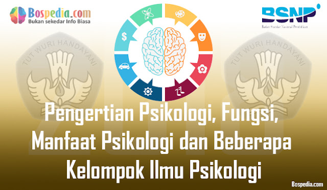 Pengertian Psikologi, Fungsi, Manfaat Psikologi dan Beberapa Kelompok Ilmu Psikologi