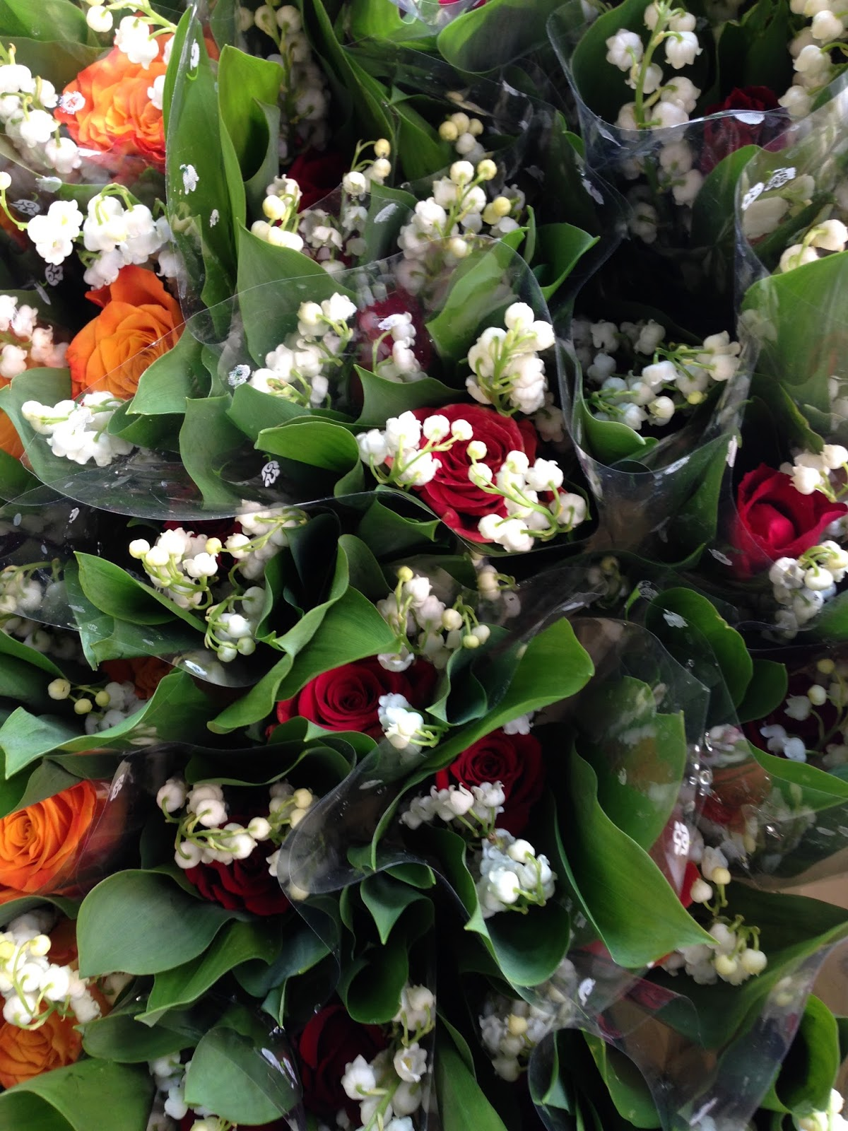 This is belgium may 1 labor day and lily of the valley day i really like the tradition of offering these pretty little white flowers to friends family and loved ones as the story goes on the first of may 1561 izmirmasajfo