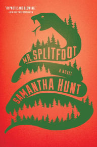 "May 2017's Book of the Month is ""Mr. Splitfoot"""
