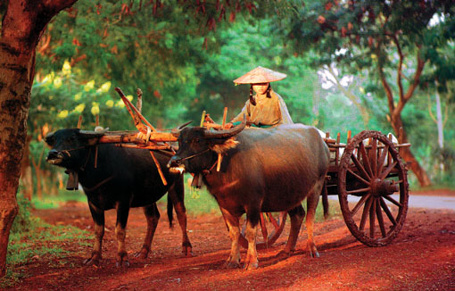 Myanmar road travel