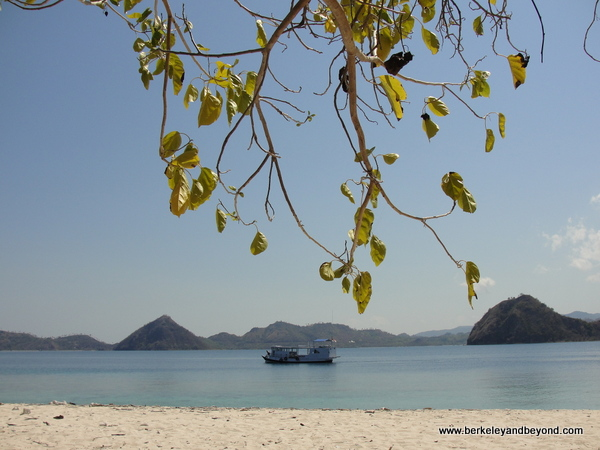 view from Angel Beach near Komodo Island in Indonesia