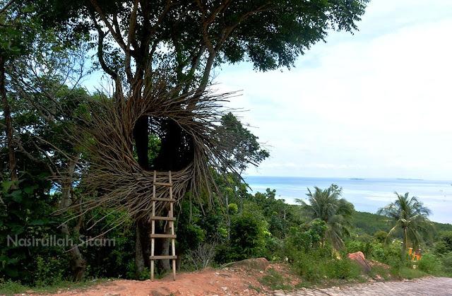 Goa atau Rumah Pohon?