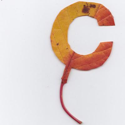 """Letra """"C"""" recortada en hoja"""