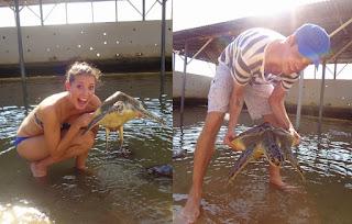 have fun in Bali at turtle island