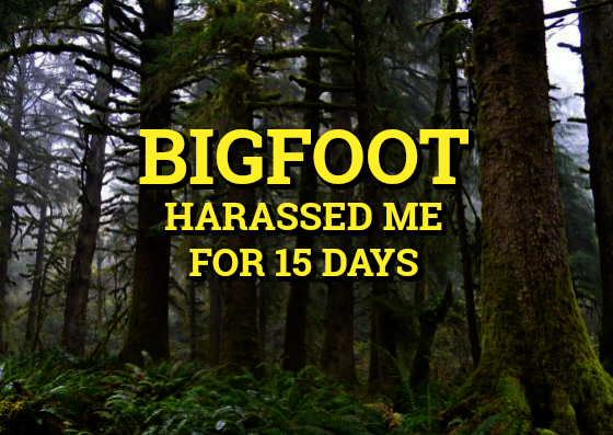 Bigfoot Harassed Me For 15 Days