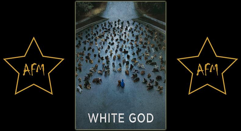 white-god-feher-isten-underdog-weißer-gott-revolten