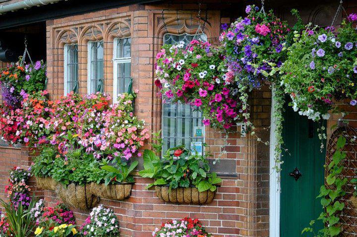 Maceteros en las ventanas for Plantas para jardineras de exterior