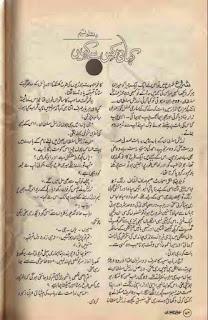 Kahani kis se kahen by Dilshad Naseem