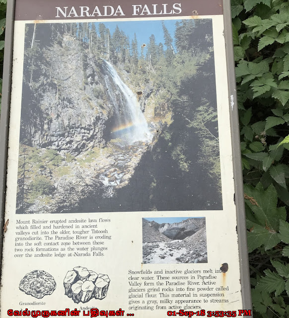 Narada Falls Mount Rainier National Park