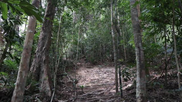 Hutan Lagenda Gunung Ledang
