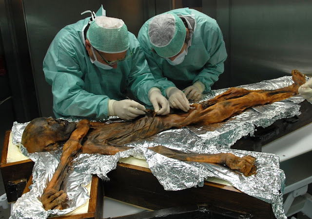 5,300-year-old Iceman's last meal revealed