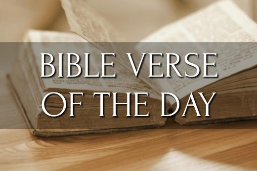 https://www.biblegateway.com/passage/?version=NIV&search=Psalm%2056:4