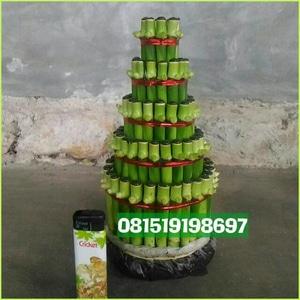 cPusat jual Lucky Bamboo | Bambu hoki, Pagoda, Spiral, Guci, Satuan PerBatang