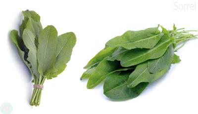 Sorrel greens