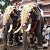 """""""Arattupuzha Pooram""""- Mother Of Pooram Festivals"""