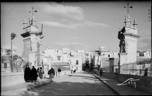 Elche (Alicante).